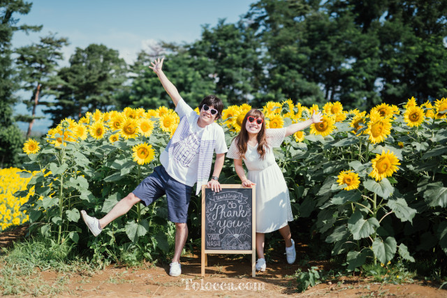 Thank you message in the sun flower fields  — Photo by Tolocca|Bespoke Photography