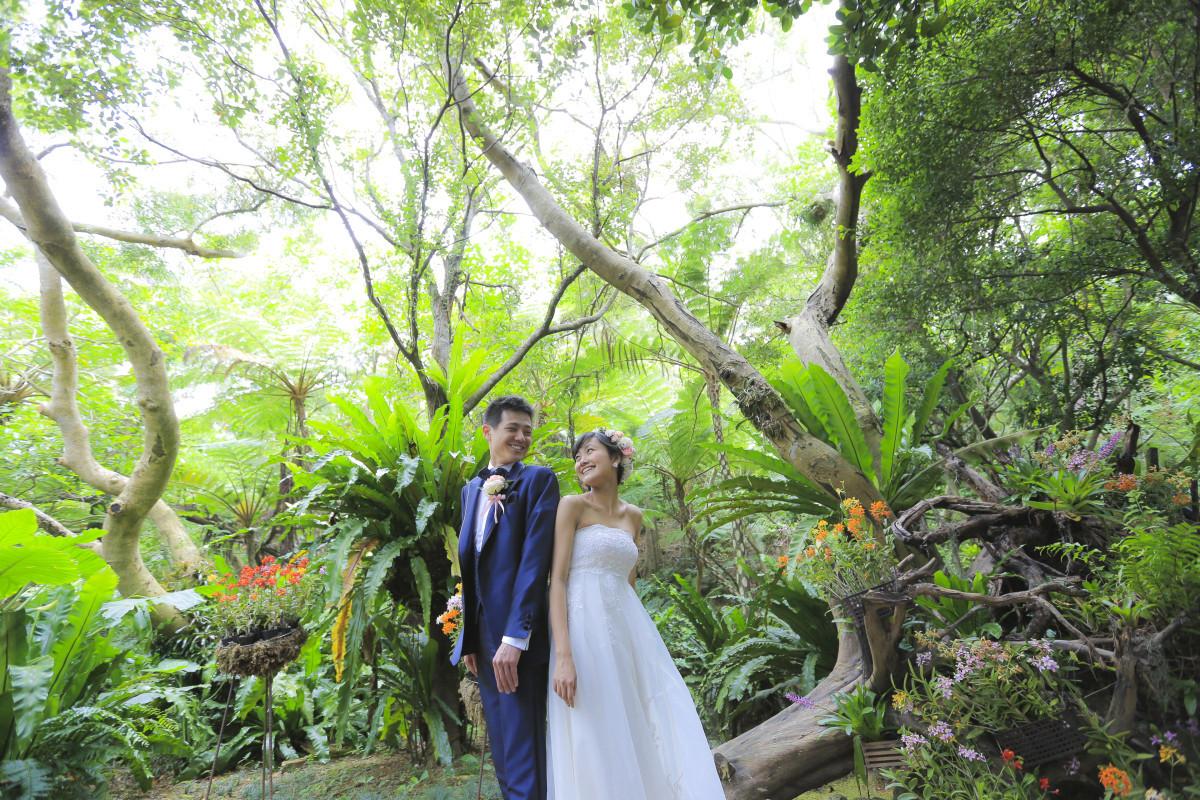 Studio SUNSが撮った沖縄の森でのウェディングフォト