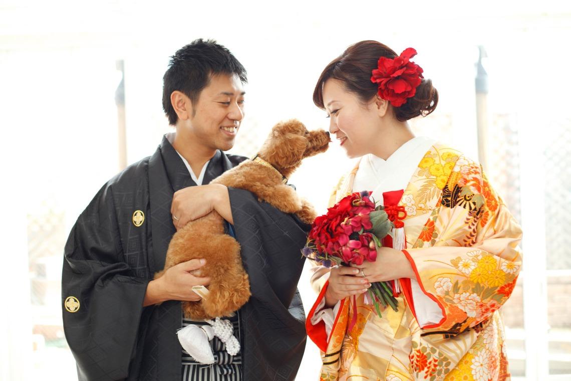 ほんとうにかわいい結婚写真ecoo(エクー)