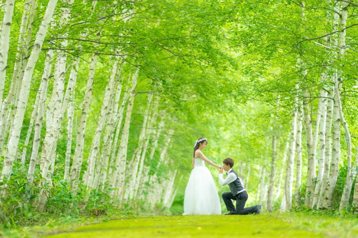 forest shot in Hokkaido — Photo by Lykke photo style
